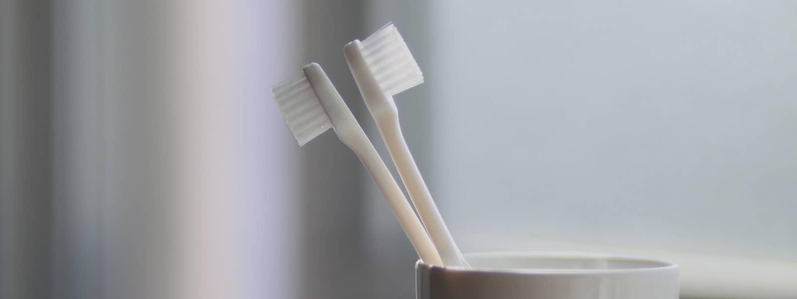Qual a melhor escova?